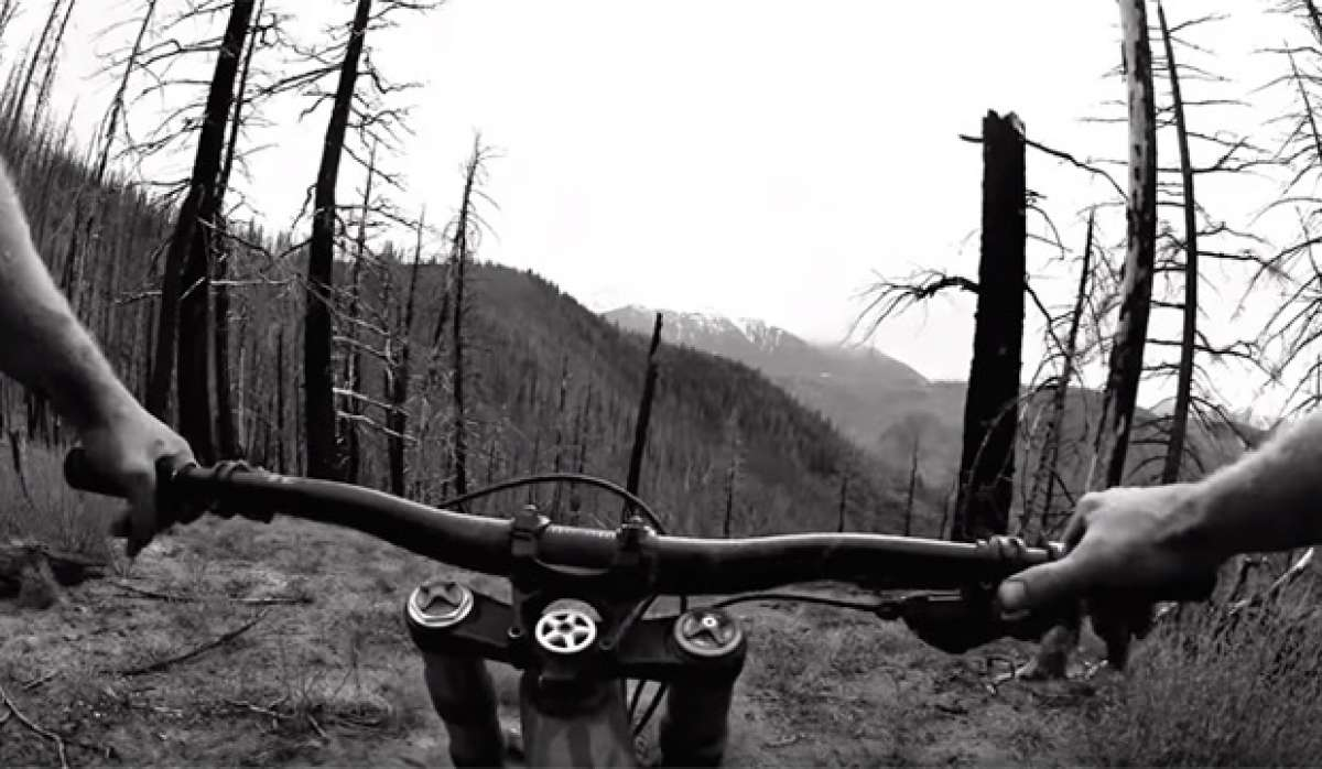Freeride en la Columbia Británica de Canadá con Matt Hunter