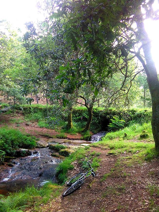 La foto del día en TodoMountainBike: 'Fontefría en Xiabre'