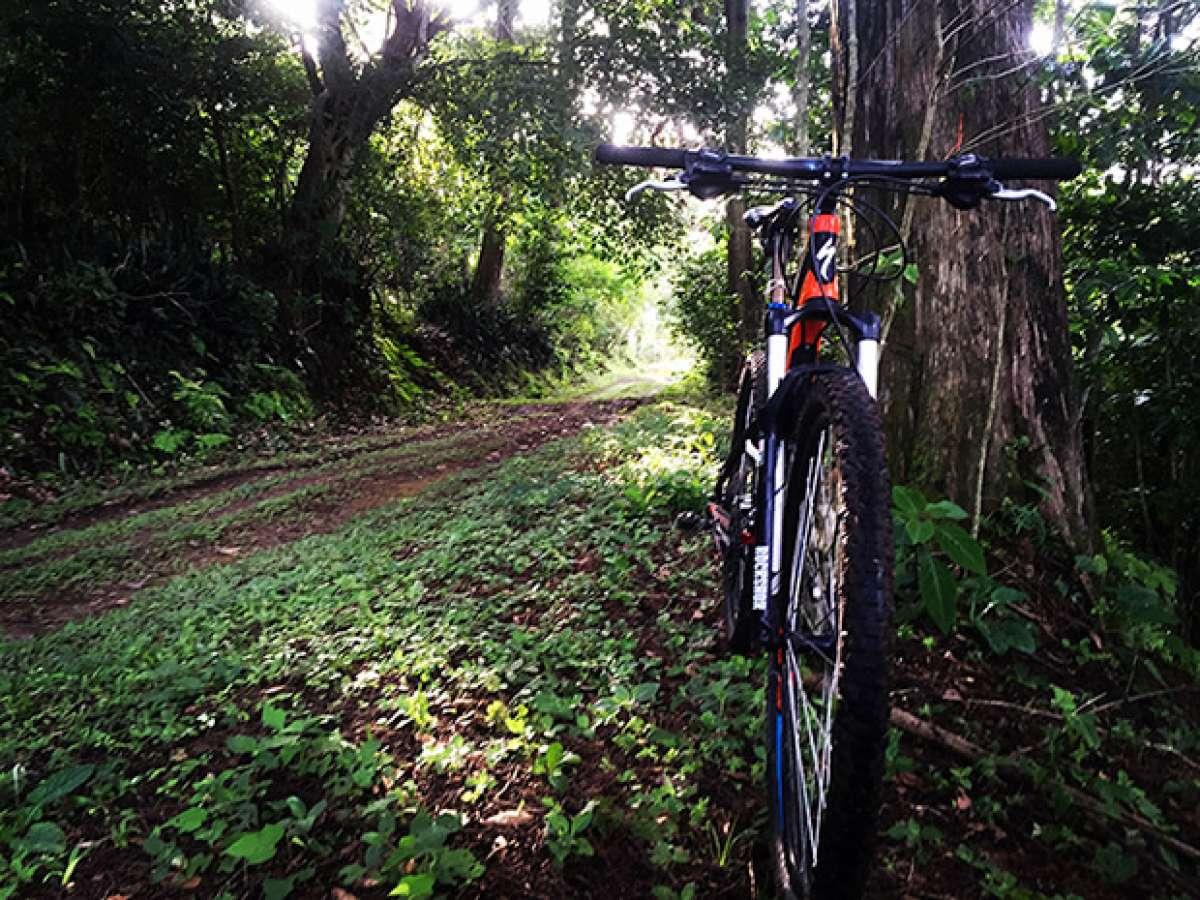 En TodoMountainBike: La foto del día en TodoMountainBike: 'Ecoparque El Espino'