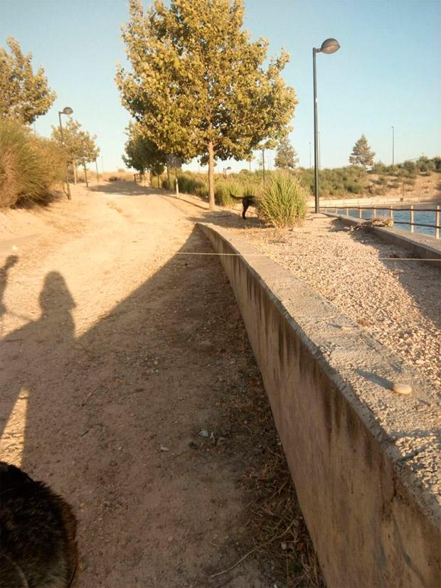 Alerta en Zaragoza: Trampas para ciclistas en Rosales del Canal