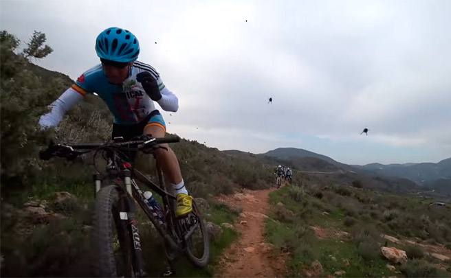 Así ataca un enjambre de abejas a un grupo de ciclistas de montaña