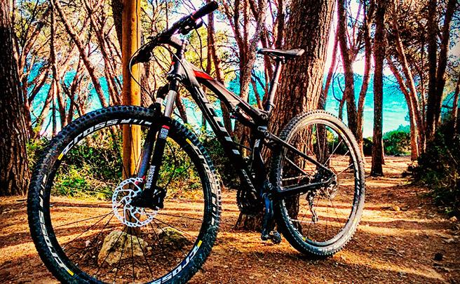 La foto del día en TodoMountainBike: 'Bosc de la Marquesa'