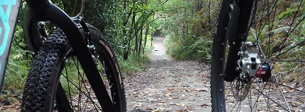 La foto del día en TodoMountainBike: 'Compartiendo ruta'