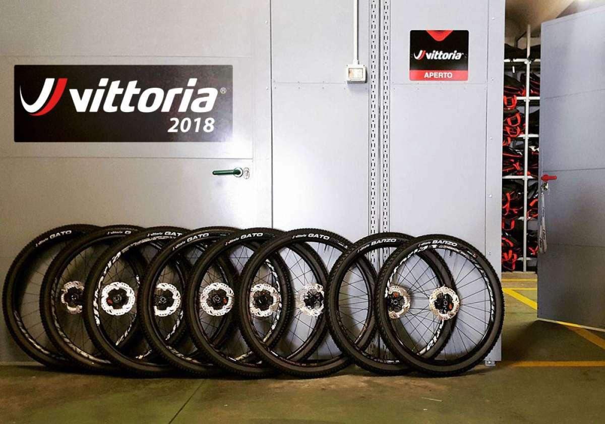 En TodoMountainBike: Catálogo de Vittoria 2018. Toda la gama de neumáticos Vittoria para la temporada 2018