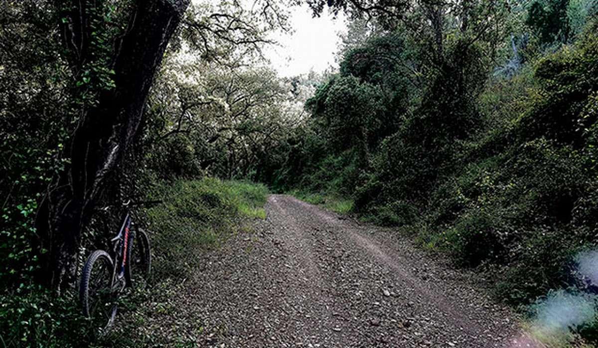 """La foto del día en TodoMountainBike: """"Camino"""""""
