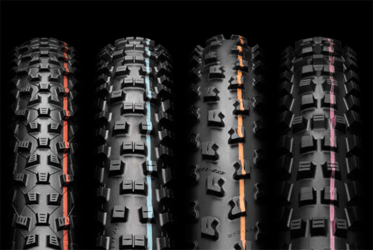 En TodoMountainBike: Schwalbe se reinventa con el nuevo compuesto ADDIX para su gama de neumáticos EVO