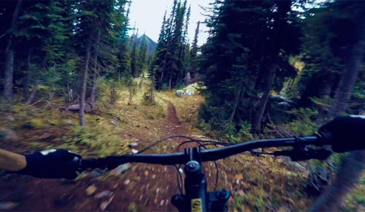 En TodoMountainBike: Connor Fearon + Kona Hei Hei Trail + Columbia Británica de Canadá = Ruta épica