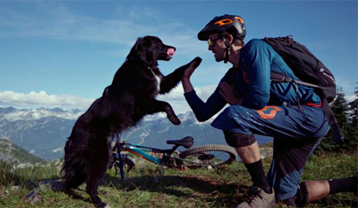 En TodoMountainBike: Rodando por la 'Lord of Squirrels' (Whistler, Canadá) con Kevin Landry, su Scott Genius y su perro Indy