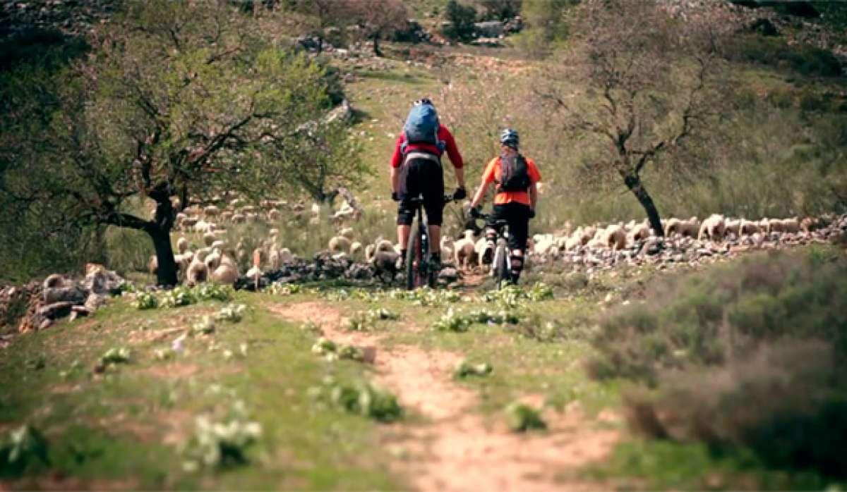 En TodoMountainBike: Practicando Mountain Biking en Andalucía (España)
