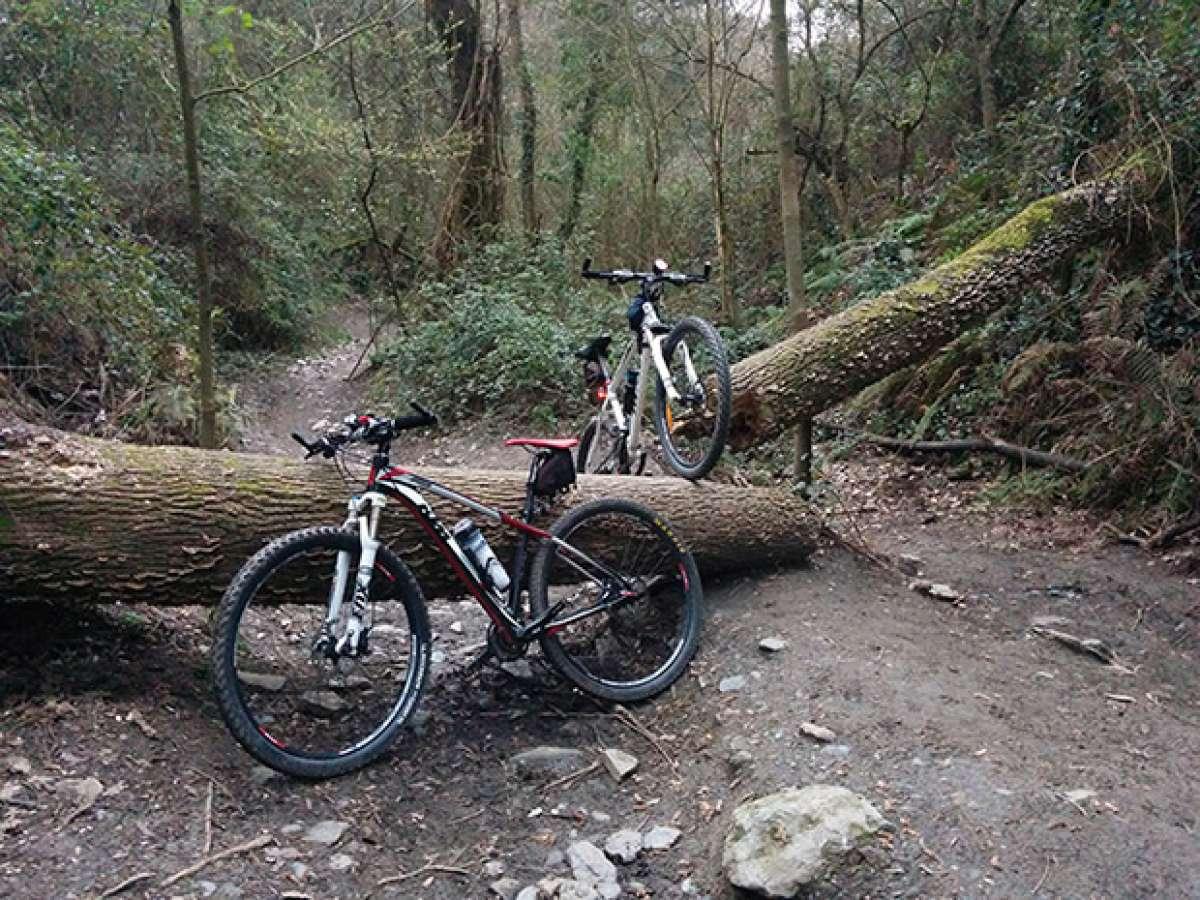 En TodoMountainBike: La foto del día en TodoMountainBike: 'Un obstáculo en la ruta'
