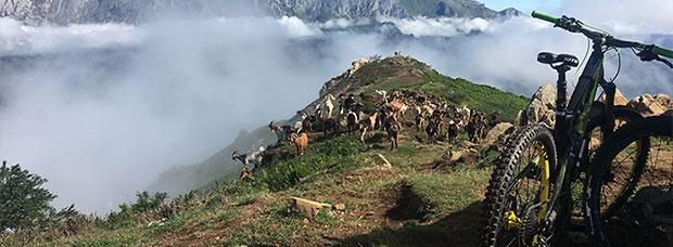 La foto del día en TodoMountainBike: 'Como las cabras'