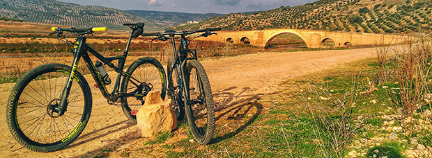 La foto del día en TodoMountainBike: 'Visita al Puente Ariza'