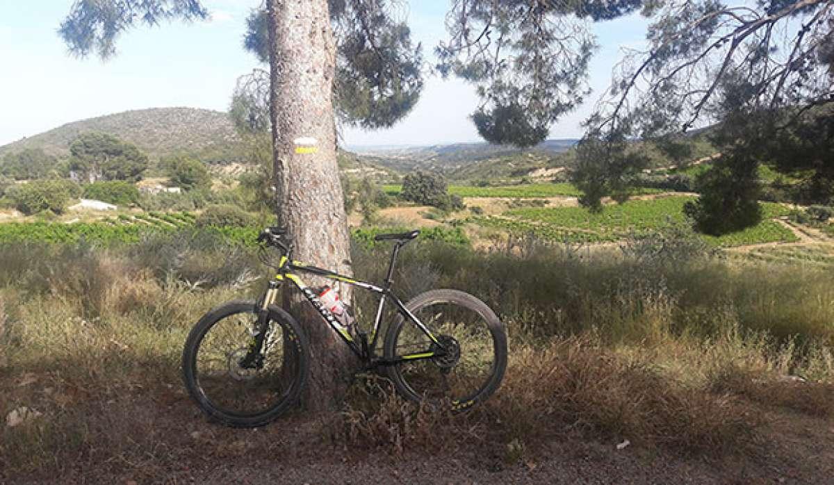 """La foto del día en TodoMountainBike: """"Sierra de Chiva"""""""