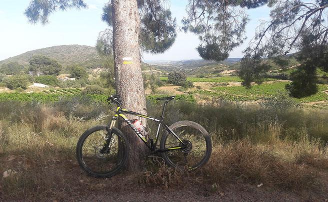 La foto del día en TodoMountainBike: 'Sierra de Chiva'