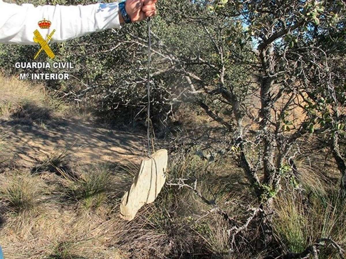 Alerta en Segovia: trampa mortal para ciclistas en una pista forestal de Bernardos