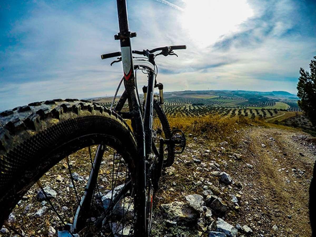 En TodoMountainBike: La foto del día en TodoMountainBike: 'Siempre es bueno parar para ver el camino recorrido'