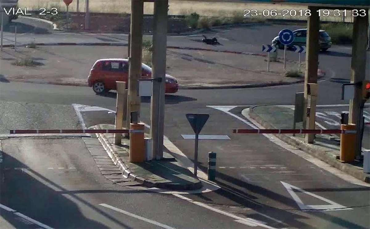 Cazado por una cámara de vigilancia: atropella a un ciclista en una rotonda y se da a la fuga