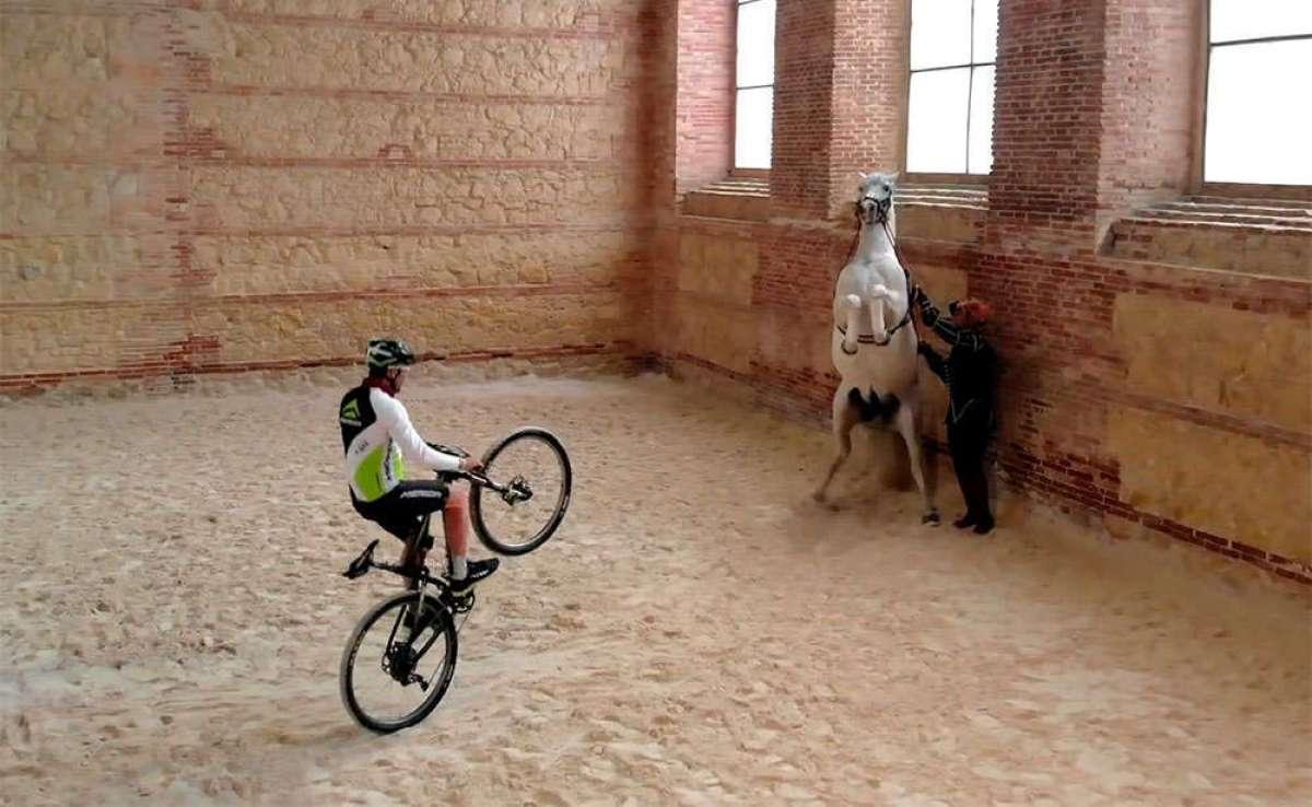 En TodoMountainBike: Carlos Coloma y José Antonio Hermida 'bailando' con caballos andaluces