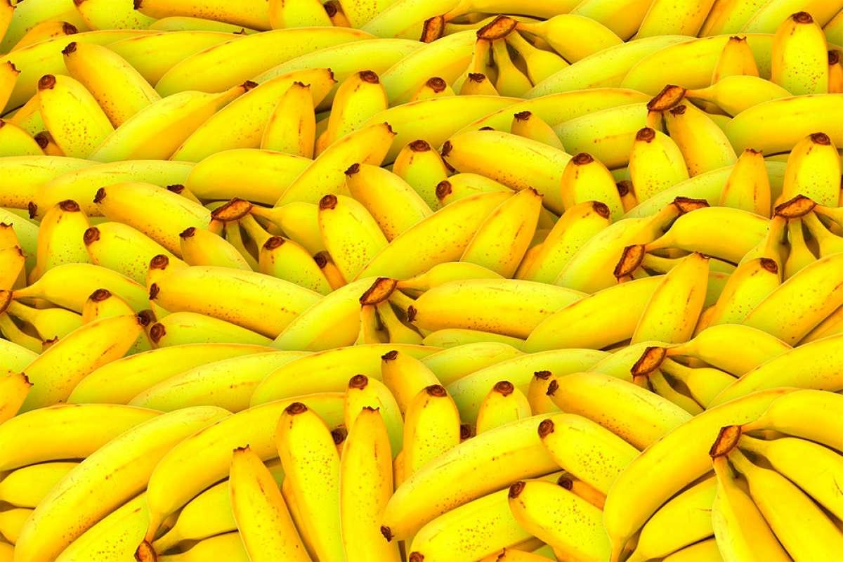Energía rápida para ciclistas: las cinco mejores frutas para antes, durante o después del ejercicio