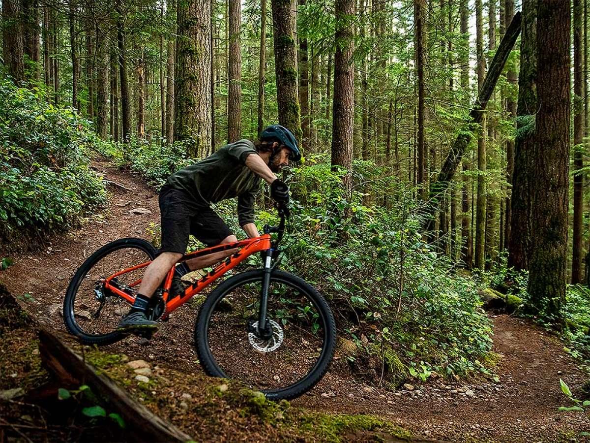 Diez bicicletas de montaña económicas pero de buena calidad para hacer el mejor regalo de Navidad