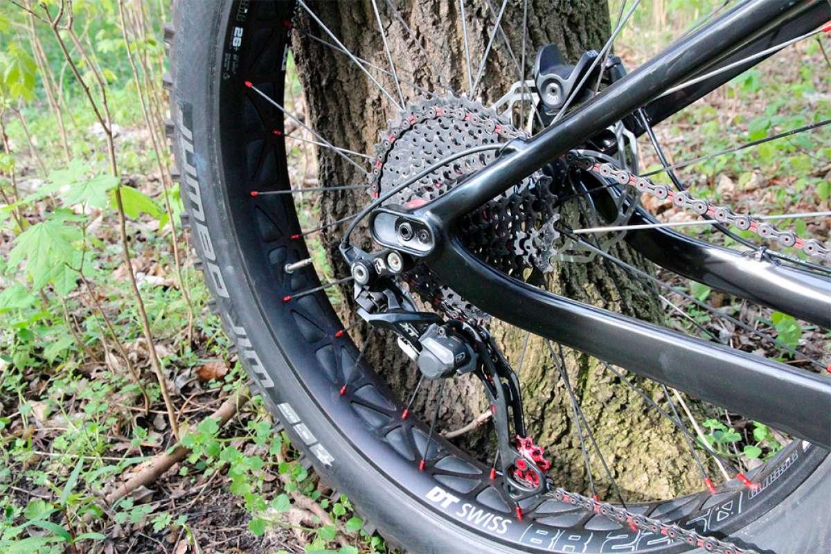 La longitud de las vainas y su influencia en la reactividad y capacidad de tracción de una bicicleta