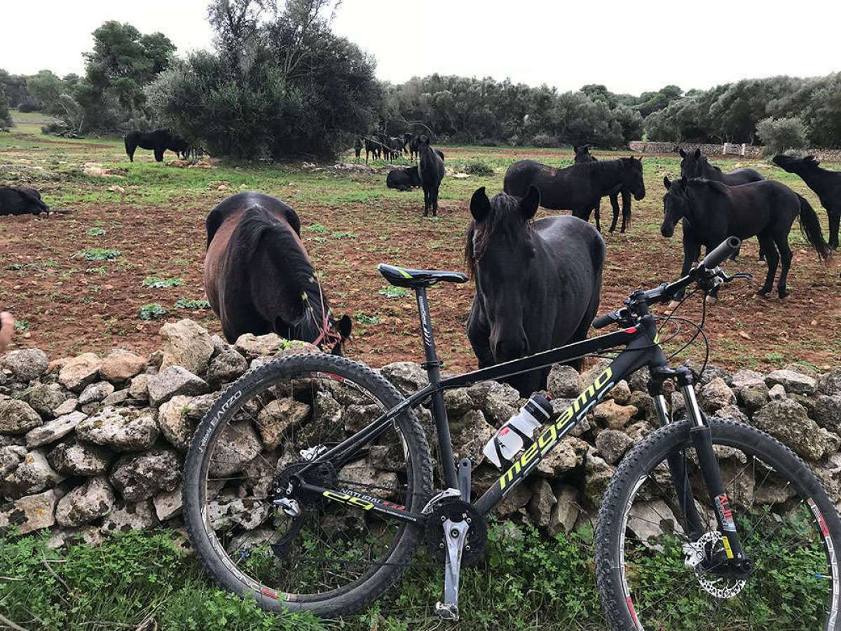 """La foto del día en TodoMountainBike: """"Menorca - Camí de Cavalls"""""""