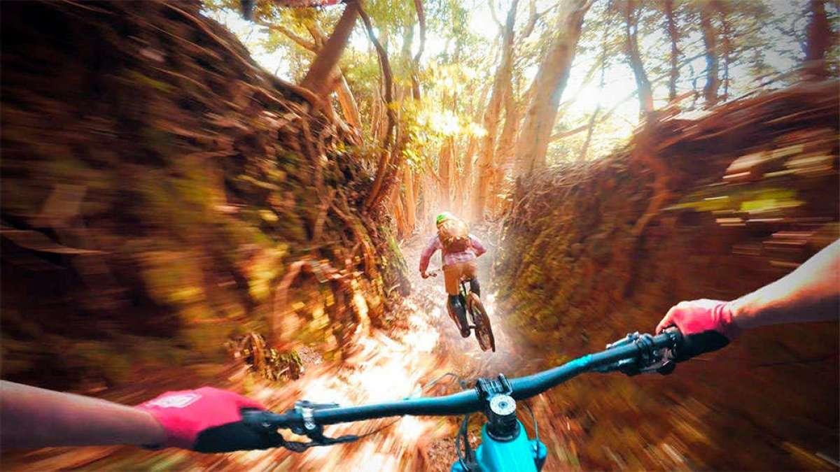 En TodoMountainBike: Rodando por los senderos 'tunelizados' de la Península de Izu, en Japón