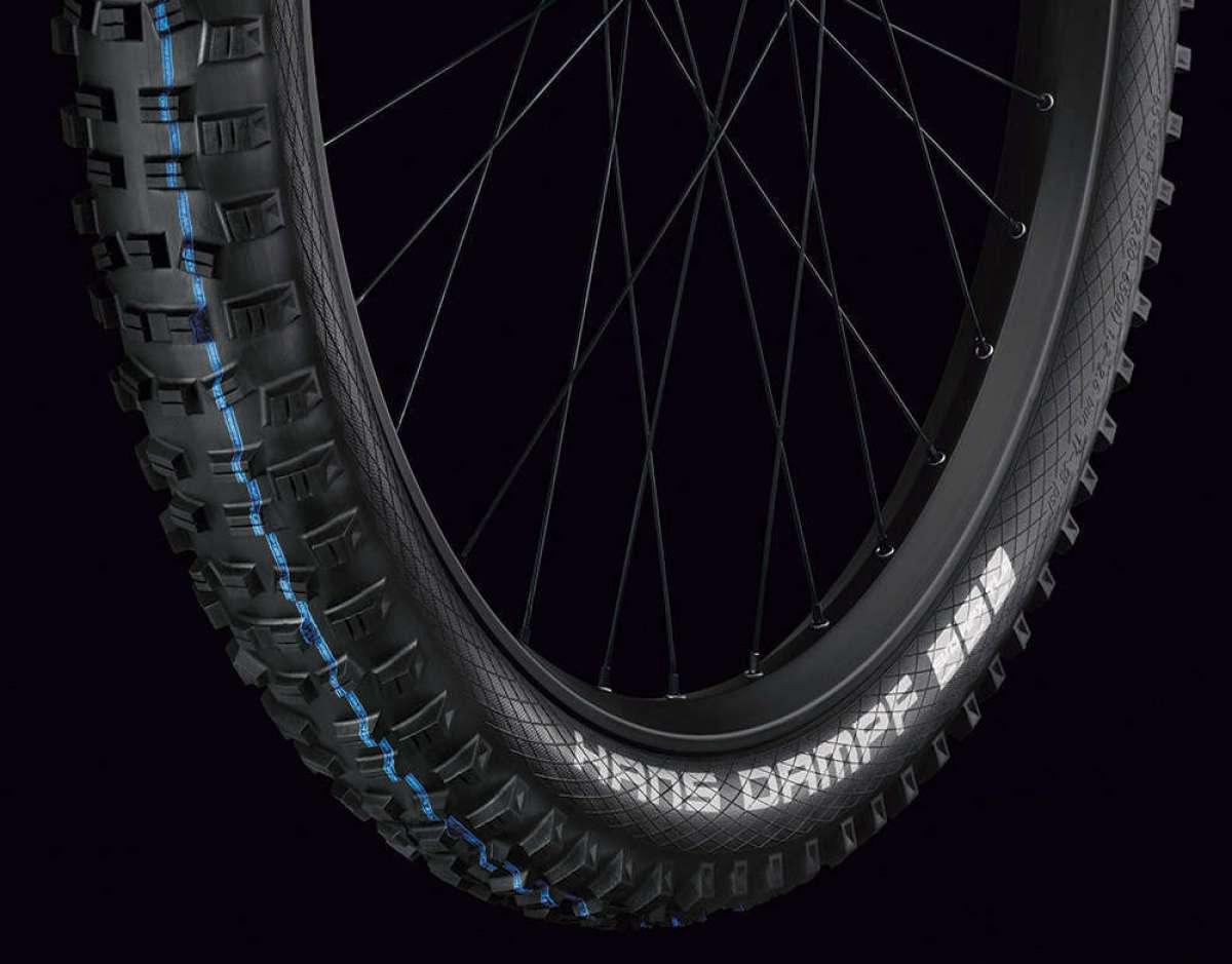 En TodoMountainBike: El neumático Schwalbe Hans Dampf se actualiza con nueva banda de rodadura y compuestos