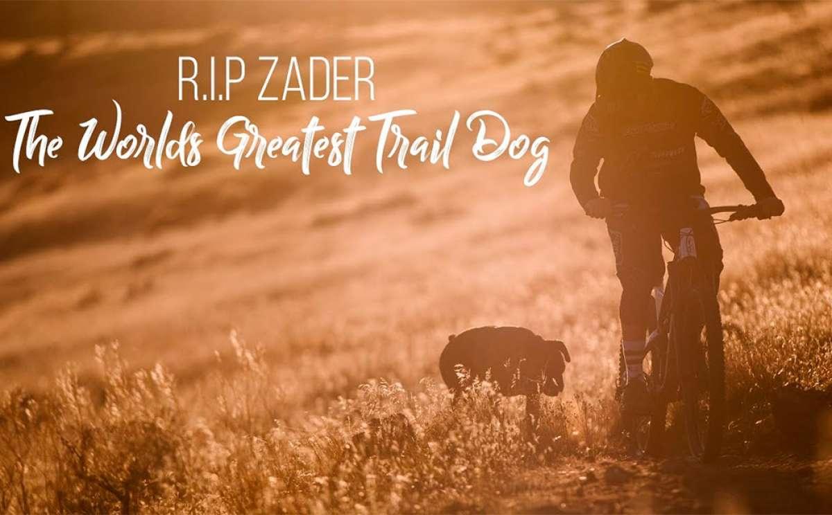 Cam Zink se despide de su perro Zader con un vídeo de los que cierran la garganta