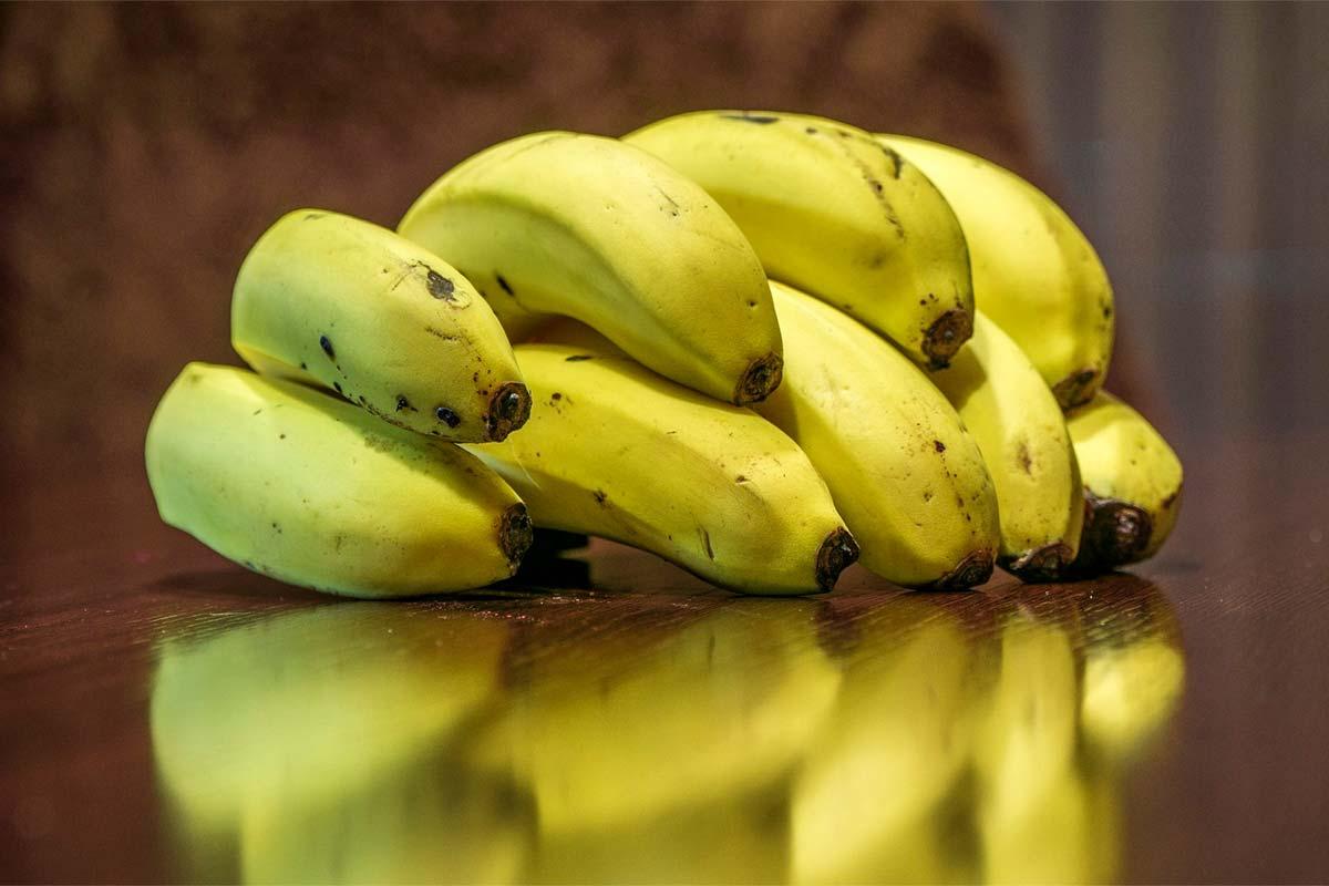 ¿Es lo mismo comerse un plátano verde que uno maduro? No, y estas son sus diferencias nutricionales